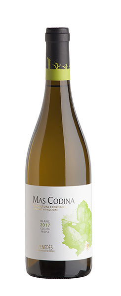 Mas Codina, vi blanc ecològic DO Penedès